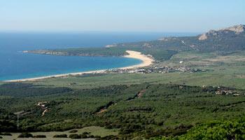 Playa del Palmar, Costa de la Luz