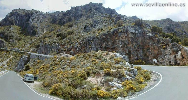 II KDD-Ruta Sierra de Cadiz Sierradegrazalema780