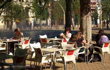 Coffee and relax on the Alameda, Seville