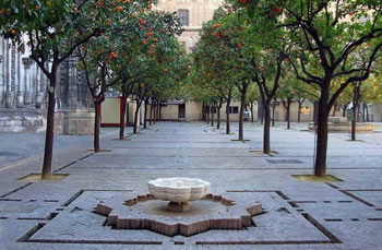The orange tree courtyard of the cathedral of  Seville, Spain