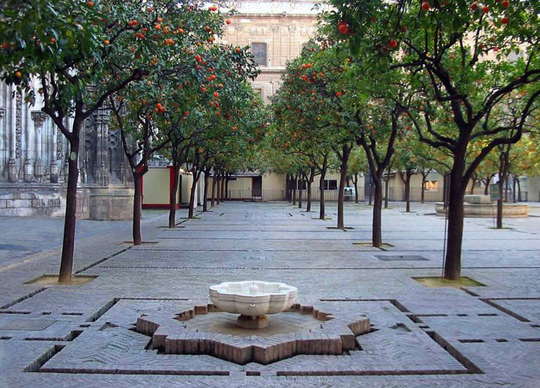 Orange tree courtyard of the Cathedral of Seville