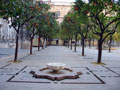 Naranjos (Orange trees) Square, in the Cathedral os Seville.